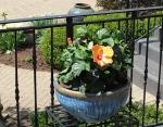 Kummer Garden